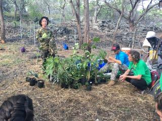 Dr. Richard Stevens donates many different native plant species